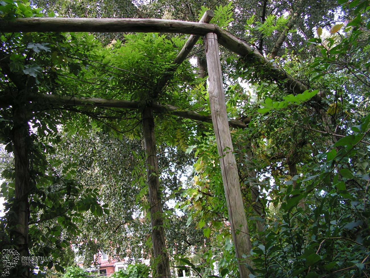 Lange tuin pulsatilla tuinen - Weergaven tuin lange ...