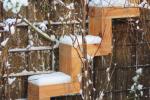 lariksschutting_trap_met_sneeuw