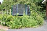 trampoline-tim