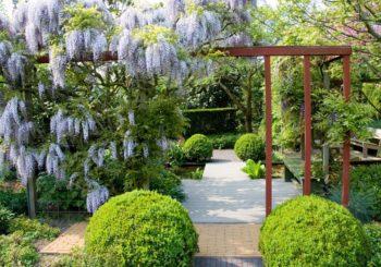 De tuinen van Appeltern: excursie.