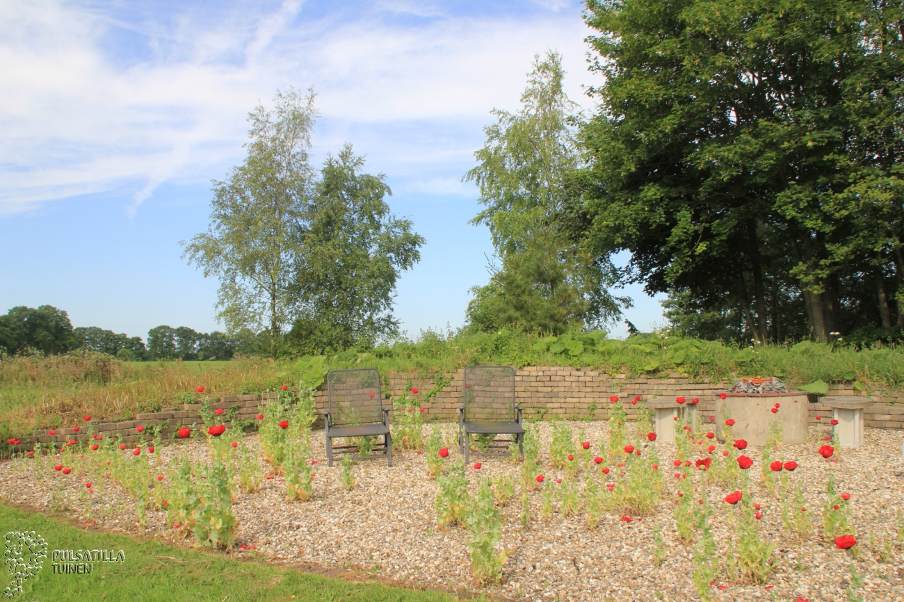 Keltische tuin en grote vijver pulsatilla tuinen for Tuin en vijver