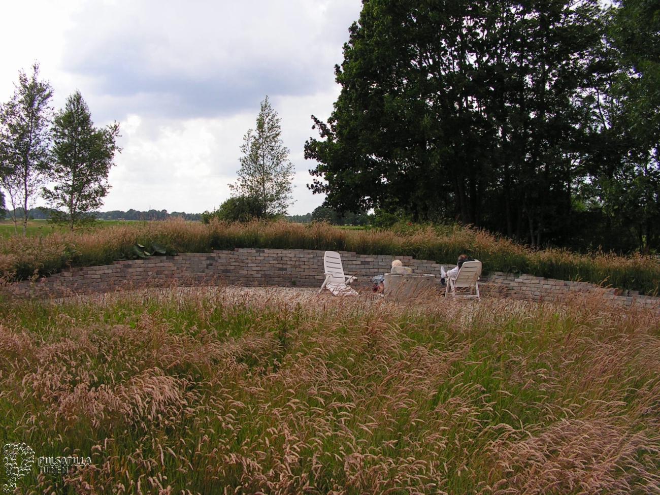 Ongemaaid gras in keltische tuin