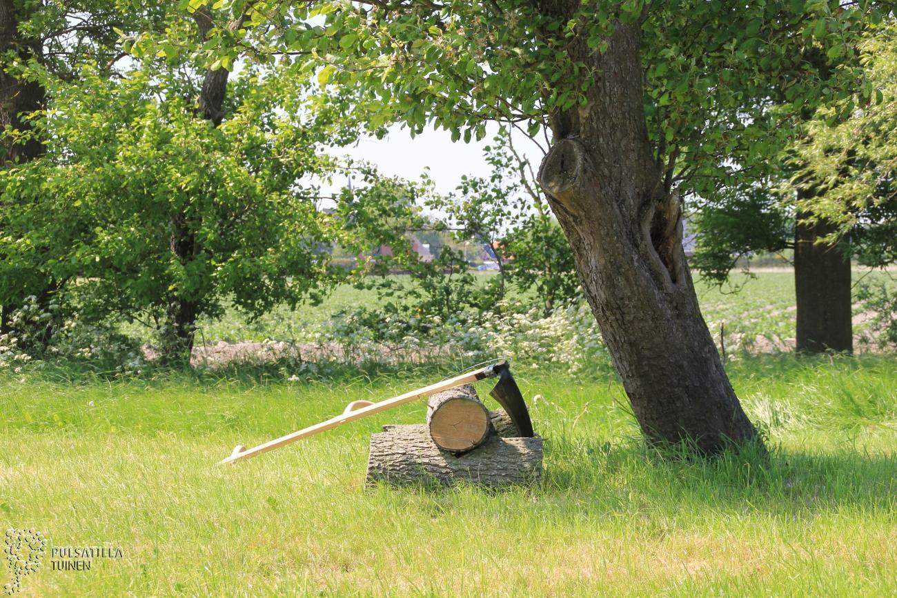 zeis bij perenboom en boombank