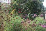 natuurlijke bloemenborder