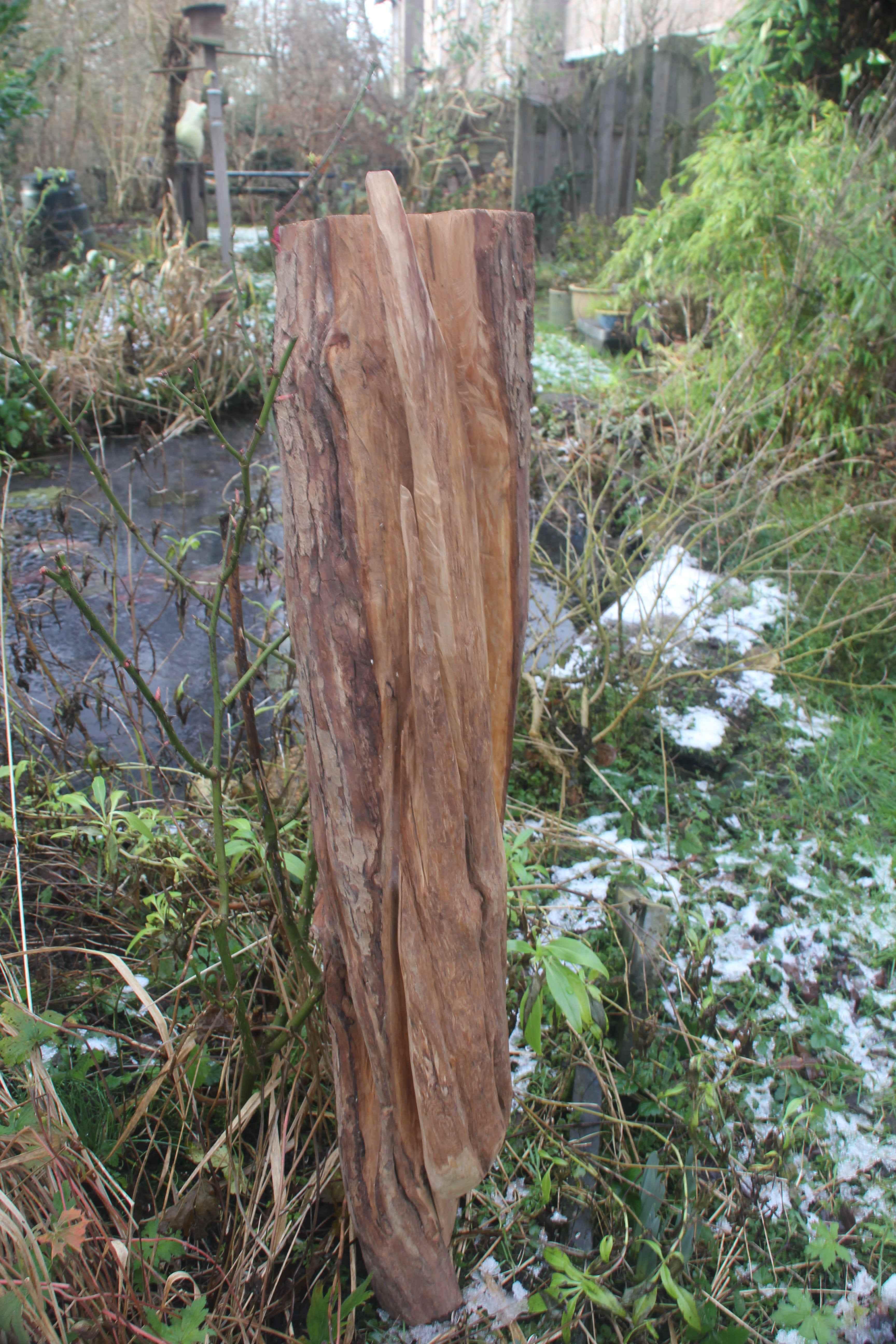 houtkruiper meidoorn tuinbeeld