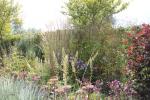 grassen2_inro
