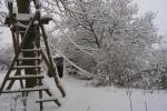 slingertouw aan boom