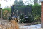trampoline_li