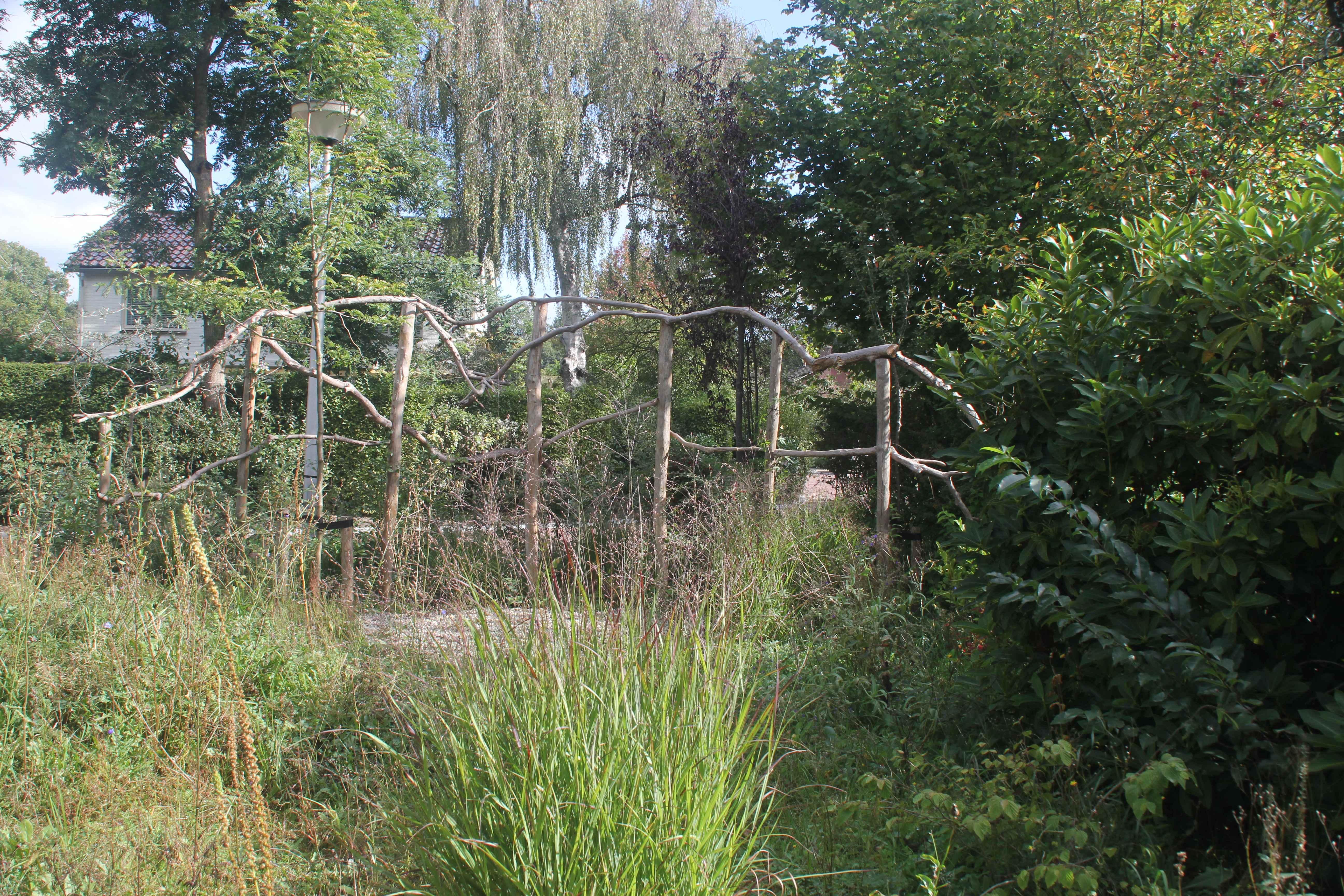 plantenklimwand-van-rhododendron-takken